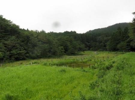 2回目の樫原湿原 117
