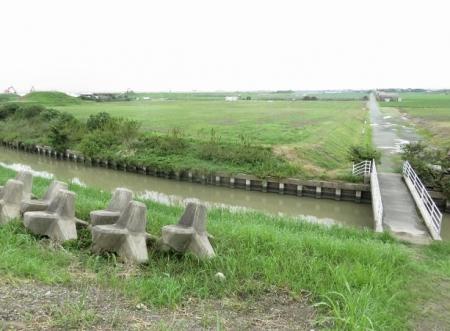 テントウムシ・水輪・運動公園 136
