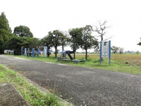 テントウムシ・水輪・運動公園 219