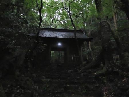 雨清水センブリ天山 014