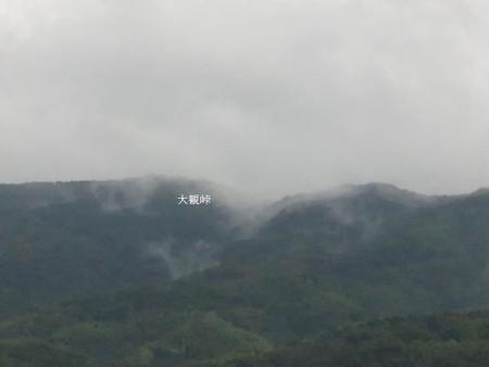 雨清水センブリ天山 006