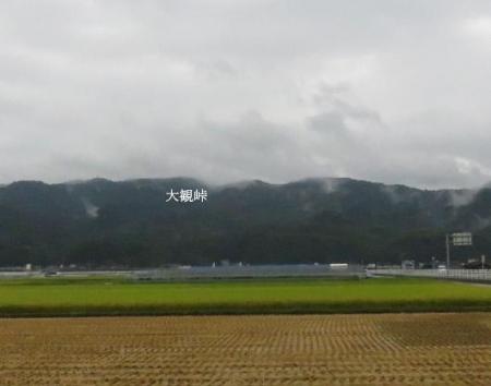 雨清水センブリ天山 001