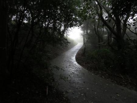 雨清水センブリ天山 071
