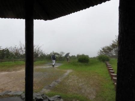 雨清水センブリ天山 081