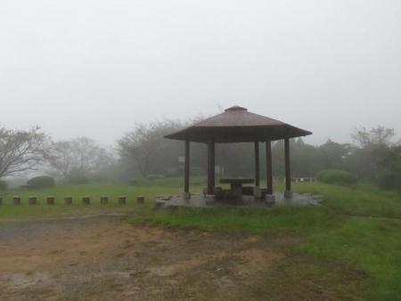 雨清水センブリ天山 075
