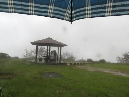 雨清水センブリ天山 078