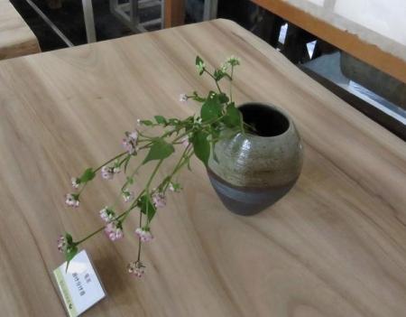 花生けと星野焼 066