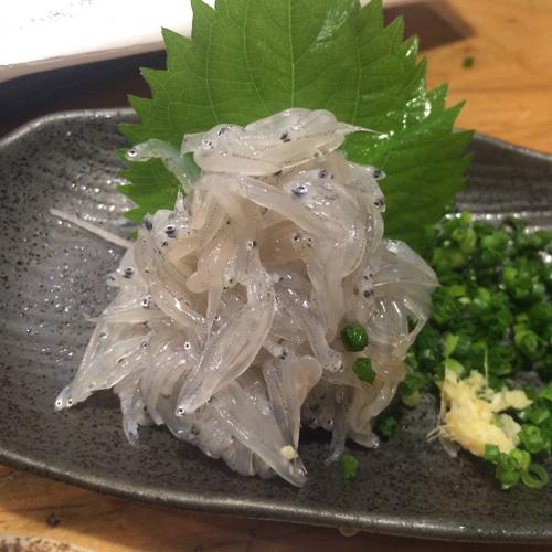 魚真新宿_2