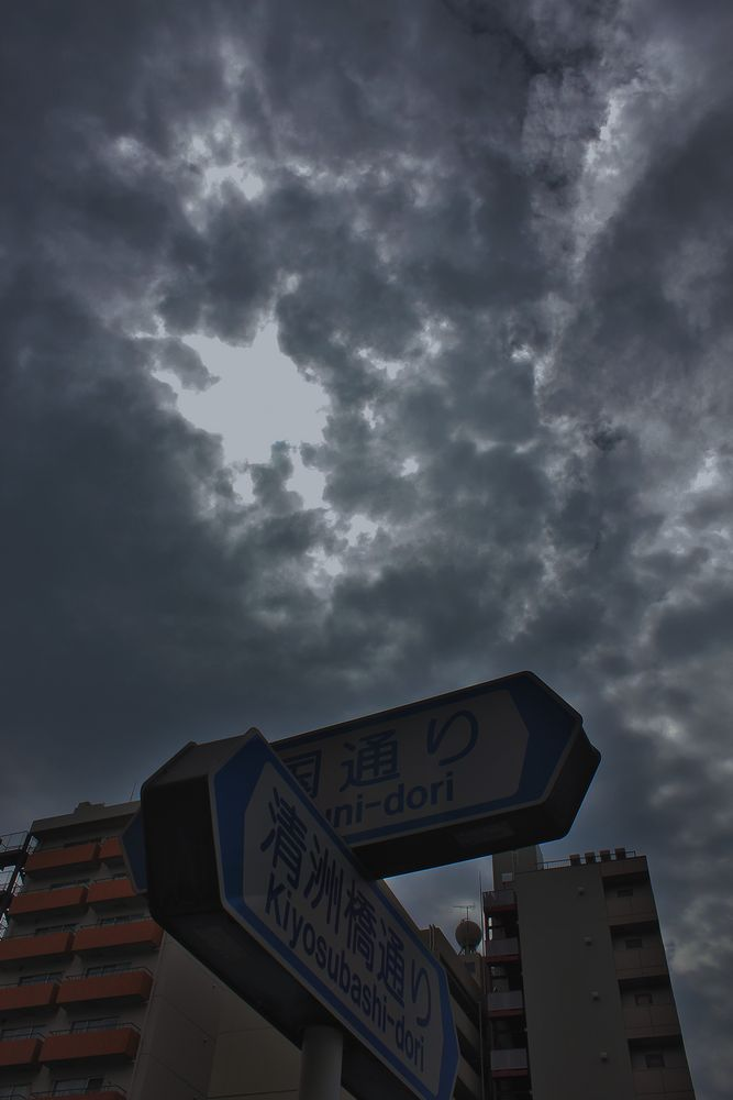 IMG_0380-1000.jpg