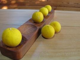 カラタチと五連の木皿IMG_6775