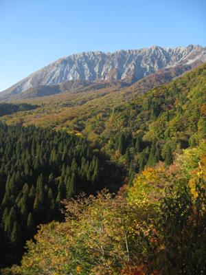 大山の秋 23
