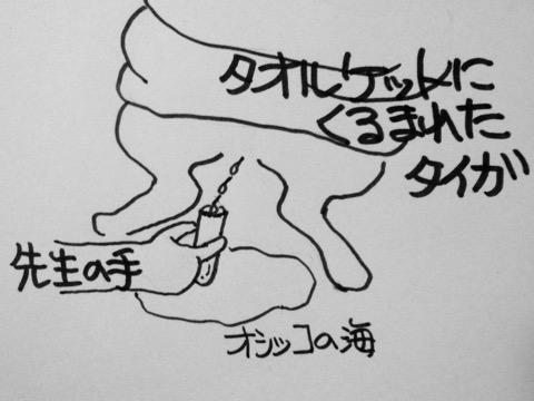 150830-4taiga