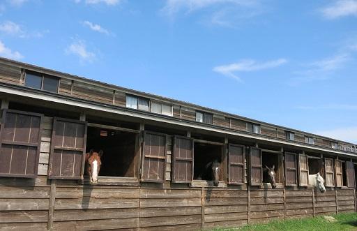 9-19馬小屋