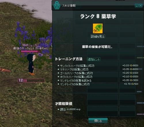 mabinogi_2015_09_14_001.jpg