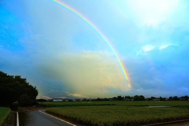 201509台風の虹 (4)