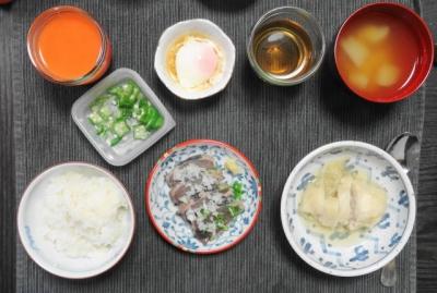 戻りガツオの塩タタキご飯
