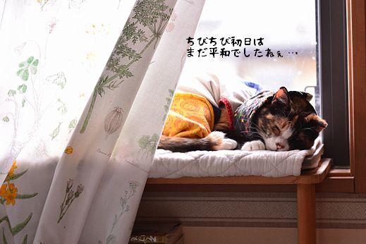 150827_4469.jpg