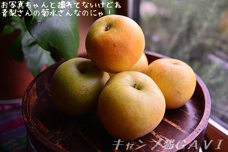 150827_4548.jpg