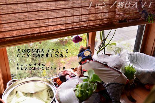 150918_5597.jpg