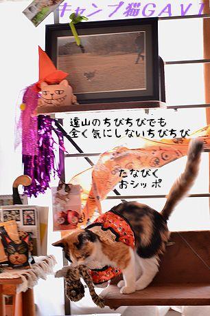151014_6650.jpg