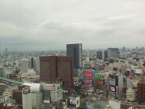 新宿高層階から