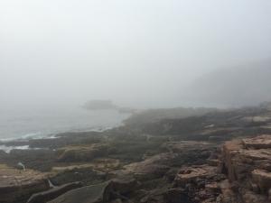 霧で視界が悪いOtters point