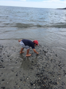 Cresent beach state park3