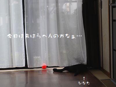 20150903b.jpg
