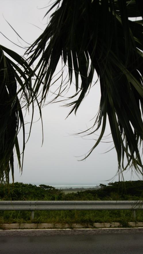 南ぬ島石垣島空港06(2015.08.08)