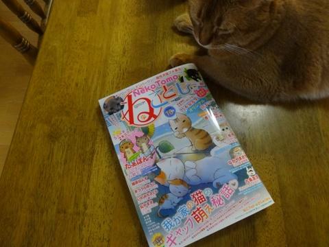 メジャーデビューなのよっ!(2015.08.18)