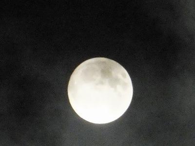 Suoer Moon, Tokyo