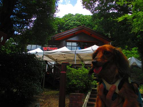 2015-07-hakone19.jpg