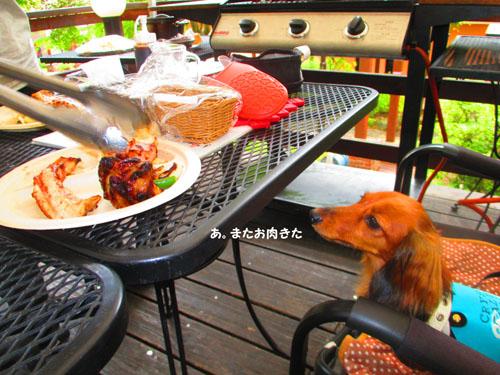 2015-07-hakone32.jpg