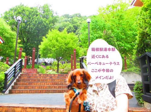 2015-07-hakone7.jpg
