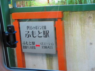 2015-08-izu113.jpg