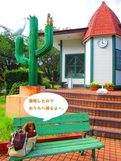 2015-08-izu118.jpg