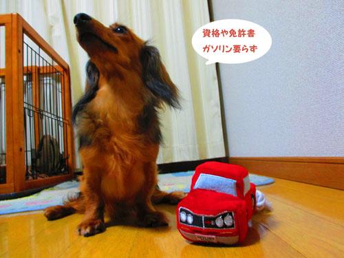 2015-08-narikiri5.jpg