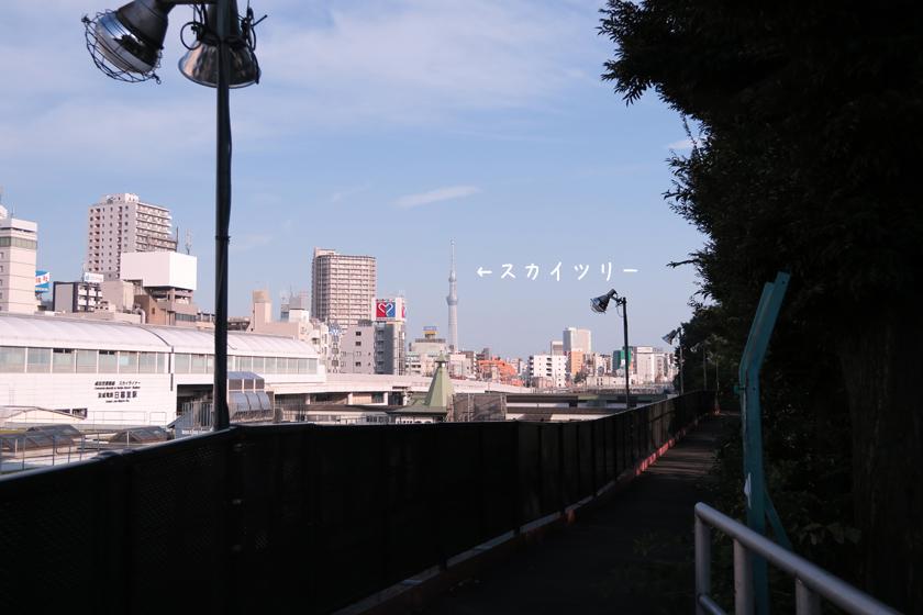 2710078.jpg