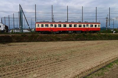s-P1010272.jpg