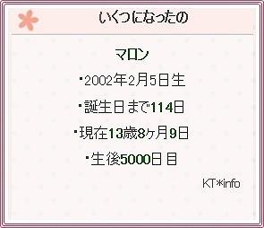 生後5000日1