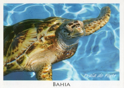 【postcrossing(received)】No766