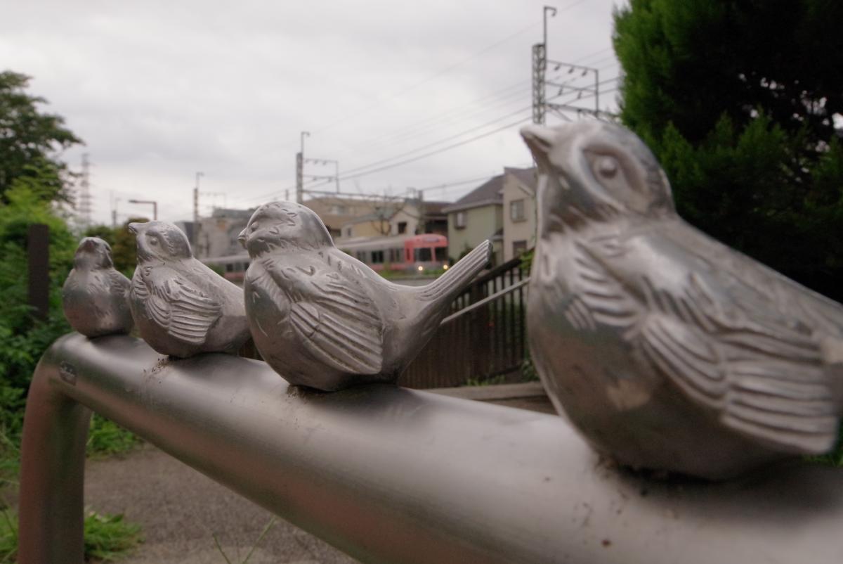 150823sparrow.jpg