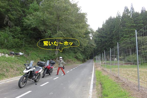 IMG_7051b.jpg