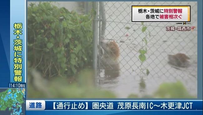 鬼怒川堤防決壊10