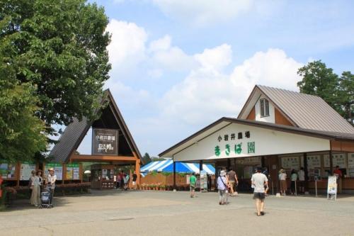 小岩井農場①