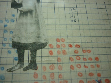 粒々の採集と研究2