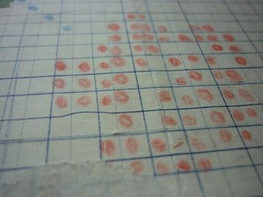 粒々の採集と研究3