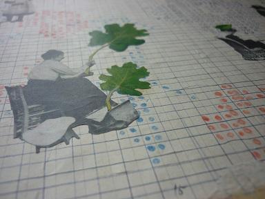 粒々の採集と研究4