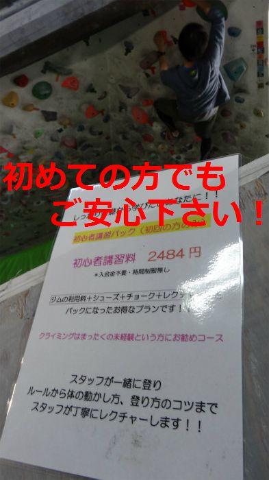 DSC08646.jpg