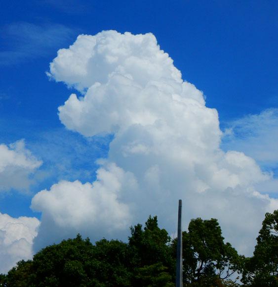 150814彩雲と墓参り3